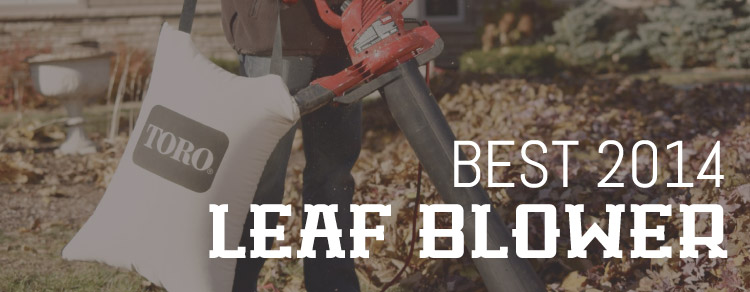 Best Leaf Blowers 2014 Dominate The Leaves This Year
