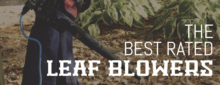 Best Rated Leaf Blowers