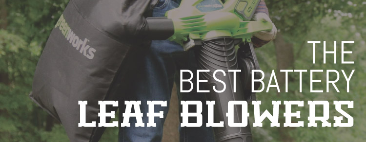 Best Battery Leaf Blowers