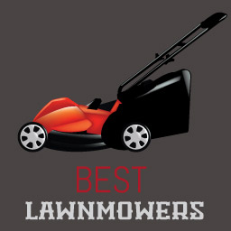 Best Lawnmower